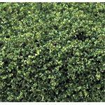 Moss Green Coarse (Bag 30 Cubic Inch)