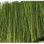 Light Green Field Grass (Bag 15g)