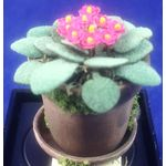 African Violet Flower by Artistic Florals (25mmH)